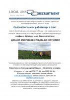 advertise general farm work BG-1.jpg